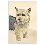 Norwich Terrier Large Poster