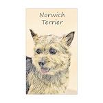 Norwich Terrier Sticker (Rectangle)