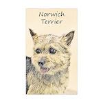 Norwich Terrier Sticker (Rectangle 10 pk)