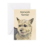 Norwich Terrier Greeting Cards (Pk of 20)