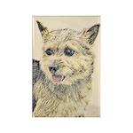 Norwich Terrier Rectangle Magnet