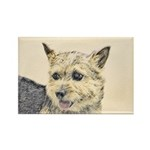 Norwich Terrier Rectangle Magnet (10 pack)