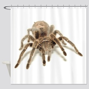 Tarantula Shower Curtain