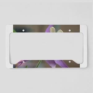 Purple and White Columbine License Plate Holder