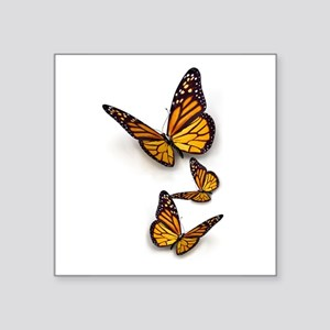 "Monarch Butterlies Square Sticker 3"" x 3"""