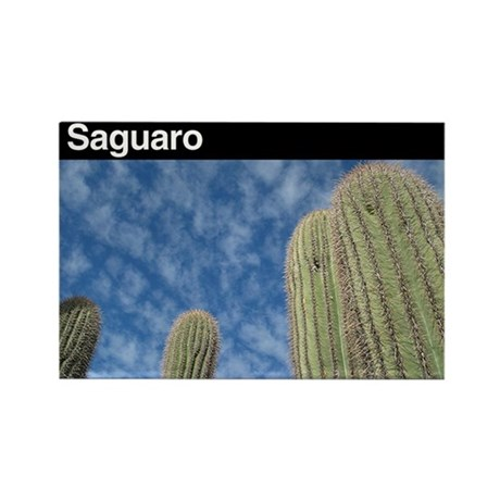 Saguaro NP Rectangle Magnet
