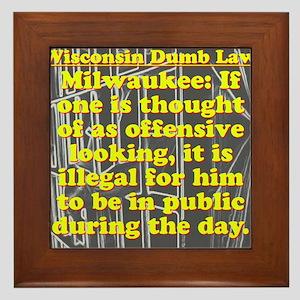 Wisconsin Dumb Law 009 Framed Tile