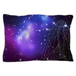 DFE Pillow Case