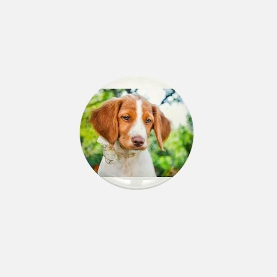 Brittany Puppy Mini Button