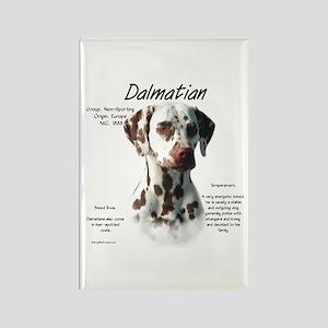 Dalmatian (liver spots) Rectangle Magnet
