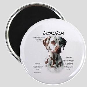 Dalmatian (liver spots) Magnet