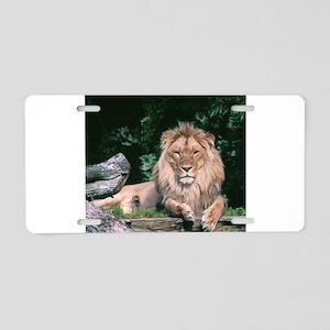 Lazy Lion Aluminum License Plate