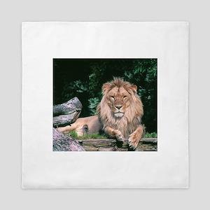 Lazy Lion Queen Duvet