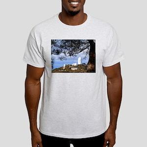 Kitt Peak National Observatory Light T-Shirt