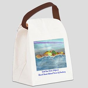 Santa Rosa Island cinmls product Canvas Lunch