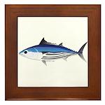Skipjack Tuna fish Framed Tile