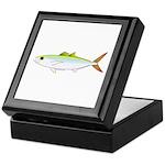 Scad Jack (Green Jack) fish Keepsake Box