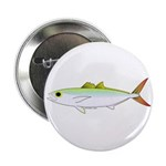 Scad Jack (Green Jack) fish 2.25