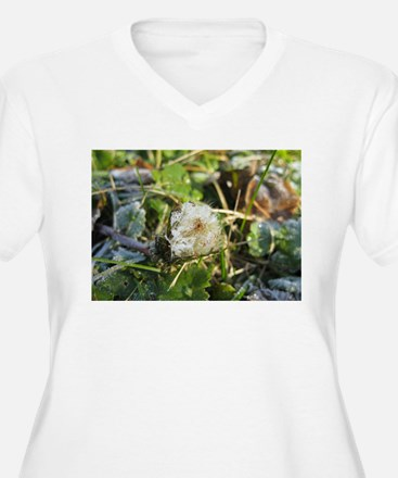 The Snow Lion T-Shirt