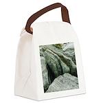 Pretty Rocks Canvas Lunch Bag