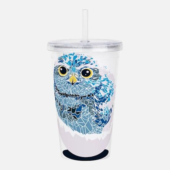 Cute Baby Owl Acrylic Double-wall Tumbler