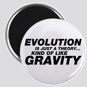 Evolution Just a Theory Magnet