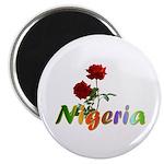 Nigeria Goodies Magnet