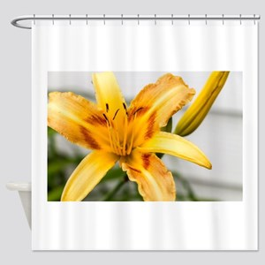 Yellow-Red Lily Shower Curtain