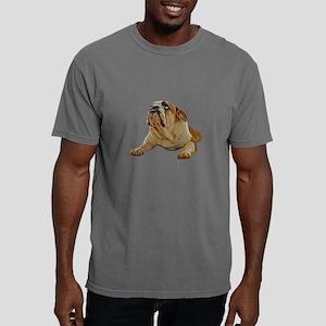 Bulldog Photo Mens Comfort Colors Shirt