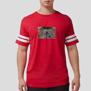 weimaraner Mens Football Shirt