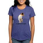 FIN-calico-cat-good Womens Tri-blend T-Shirt