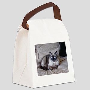 Pixie April 17 09 Canvas Lunch Bag