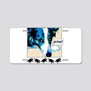 border collie got sheep2a Aluminum License Pla