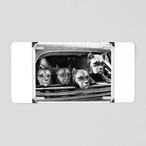 boxer vintage photo corrected frame1 Aluminum