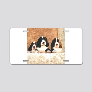 springer pups2 sq Aluminum License Plate