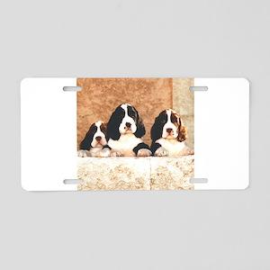 springer pups2 sq Aluminum License Plate