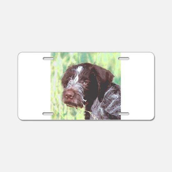 german wirehaired sq 2 watercolor.png Aluminum Lic