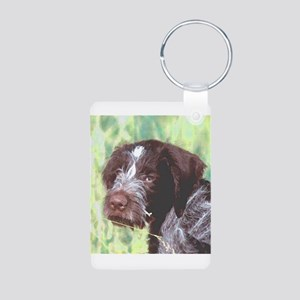 german wirehaired sq 2 watercolor Aluminum Pho