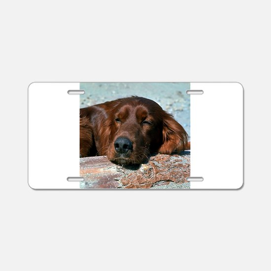 irish setter sq larger.png Aluminum License Plate