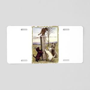 terriers-1 sq corrected crosshatch edge Alumin