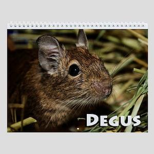 Degu Wall Calendar