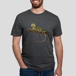 Iguana iguana Mens Tri-blend T-Shirt