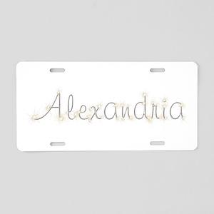 Alexandria Spark Aluminum License Plate
