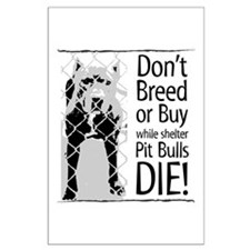Pit Bulls: Don't Breed Large Poster