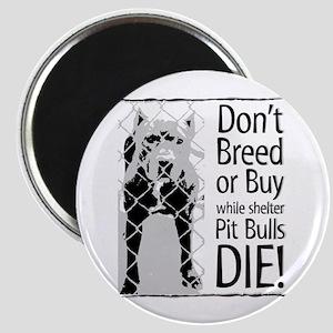 Pit Bulls: Don't Breed Magnet