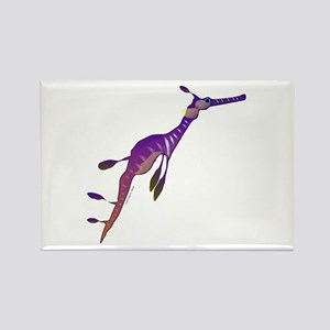 Weedy Sea Dragon fish Rectangle Magnet