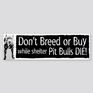 Pit Bull Don't Breed or Buy Bumper Sticker