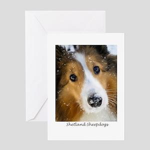 Shetland Sheepdogs Greeting Card