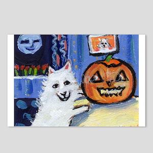 American Eskimo dog investiga Postcards (Package o