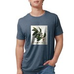 FIN-coffee-arabica-botanical Mens Tri-blend T-